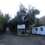 01 Acceso Fundo El Manzano