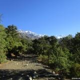 04 Quebrada El Manzano