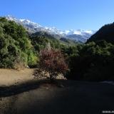 06 Quebrada El Manzano