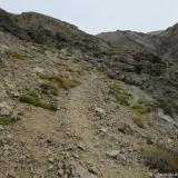 12 Huella Animal entre Roquerios