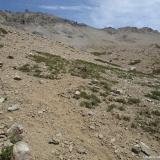 14 Ladera N Cos. Alto del Retamal 3.353msnm & Tinajon 3.189msnm