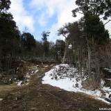 04 Camino de Leñeros Secundario