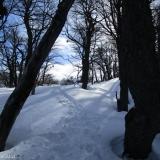 09 Saliendo desde el Bosque al Escorial