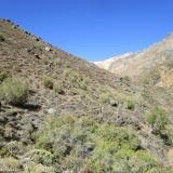 11 Por la Ribera E de la Quebrada Las Bayas