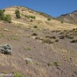 07 Loma de los Saltamontes
