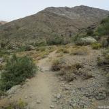 08 Llegando al Encuentro de las Quebradas Las Bayas y Las Gualtatas