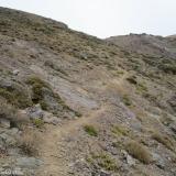 13 Huella Animal entre Roquerios