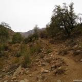02 Acceso a la Quebrada Las Gualtatas