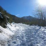 09 Nieve