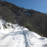 11 Camino Marcado