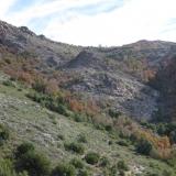 10 Bosque Higrofilo
