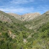 20 Quebrada entre el Altos de Cantillana y el Horcon de Piedra