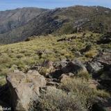 25 Vista desde la Cumbre Hacia el Tranque y al Co. Roble Alto 2.207msnm
