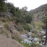 04 Sendero por la Ribera O del Estero