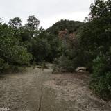 07 Sendero Difuso por la Ribera E del Estero El Manzano