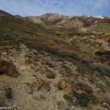 19 Campamento de Arrieros en la Vega