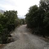 02 Camino Vehicular en el Fundo El Manzano