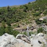 06 Porton Quebrada Los Manantiales