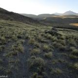 03 Sendero en la Quebrada del Arroyo Montañesito