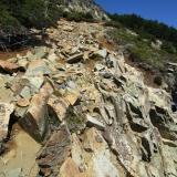 15 Gateos en Roca