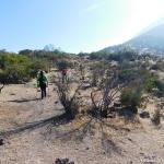 04 Rodeando el cerro