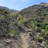 03 Sendero Animal en la Quebrada Los Gauchos