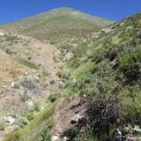 10 Co. Porongo 2.928msnm y Quebrada Estacional
