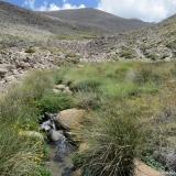 14 Estero El Bosque