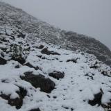 02 Huella cubierta de nieve