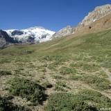 10 Huella Animal hacia el Hito Paso de Nieves Negras