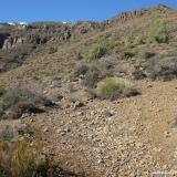 14 Hacia la Zona de Rocas