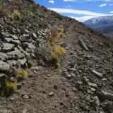 05 Camino del Inca a 2.500msnm
