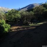06 Camino Hacia la Robleria