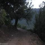 01 Camino 4x4