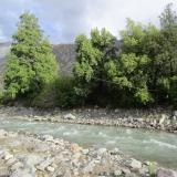 01 Carrito Sobre el Rio Pangal