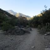02 Sendero por la Ribera O del Estero Coyanco
