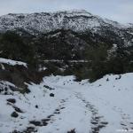 04 Camino-Gaseoducto & Mo. Buitrero 2.108msnm
