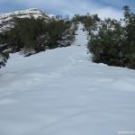 12 Nieve y Matorrales