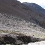 26 Ladera NO Mo. La Laguna 3.780msnm