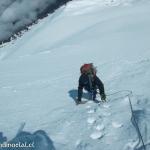 15 Escalando Coliflores