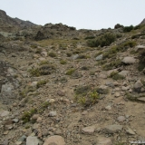 10 Tramo Superior Quebrada Las Gualtatas