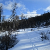 06 Nieve Fresca