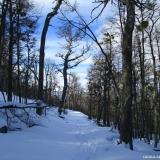 08 Nieve a los Pies de las Lengas