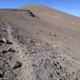 15 Sendero hacia la Cumbre Coronada en Antena