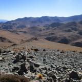 26 Quebrada Carrizalillo