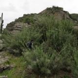 13 Filo Entre Vegetacion y Rocas