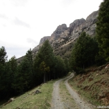 02 Camino Vecinal entre Pinos