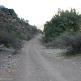 01 Camino Vehicular