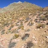 11 Llegando al Sector de las Rocas