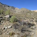 12 Quebrada Las Bayas